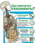 лечение от паразитов медикаменты